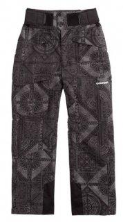 GOLDWIN(ゴールドウィン) G31606P SHIZUKU PANTS メンズ スキーウェア スノーパンツ
