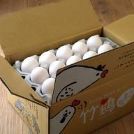 「竹鶏たまご うみたて定期便」前払い・月2回コース(送料込)