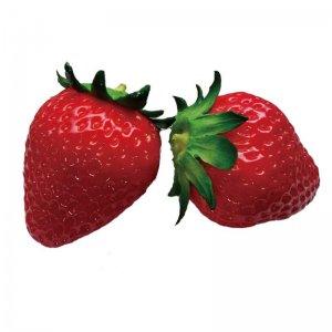 食べられない苺 Fake strawberry