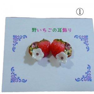 野イチゴの耳飾りハーフ