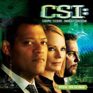 2010年 輸入 CSI カレンダー