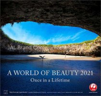 A WORLD OF BEAUTY(JAL) 2021年 カレンダー