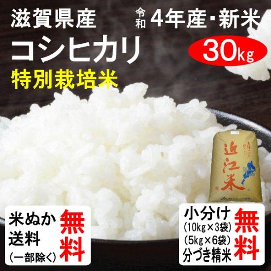 (会員様は500円引き!)平成28年産 滋賀県東近江市山上町産 特別栽培米コシヒカリ(1等玄米) 30kg 送料…