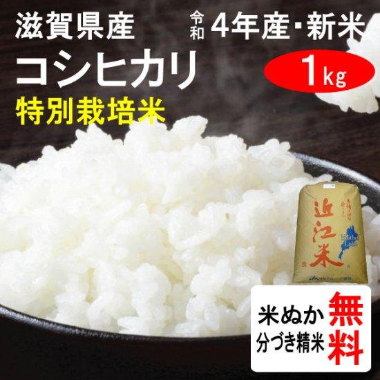 平成28年産 滋賀県東近江市山上町産 特別栽培米コシヒカリ(1等玄米) 1kg