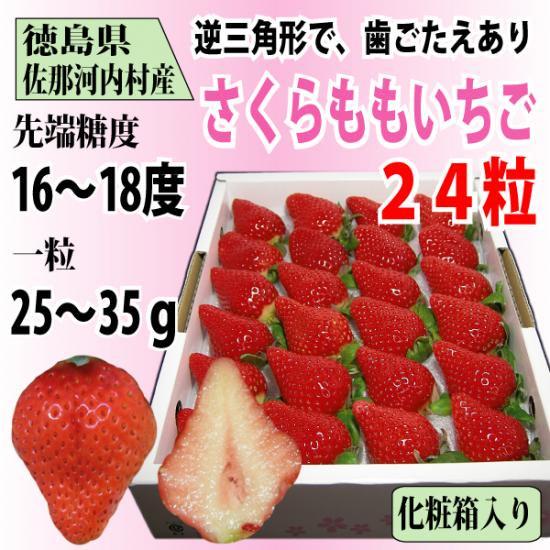 (12月中旬頃より入荷次第発送)徳島県 佐那河内村産 「さくらももいちご」24粒 化粧箱入り 送料無料