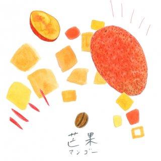 自家焙煎キリンフルーツ珈琲〈マンゴー〉(豆100g)