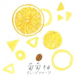 自家焙煎キリンフルーツ珈琲〈グレープフルーツ〉(豆100g)
