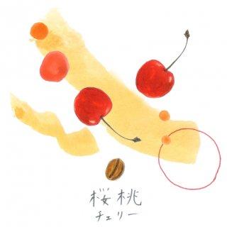 自家焙煎キリンフルーツ珈琲〈チェリー〉(豆100g)