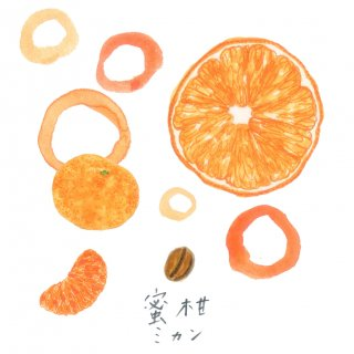 自家焙煎キリンフルーツ珈琲〈ミカン〉(豆100g)