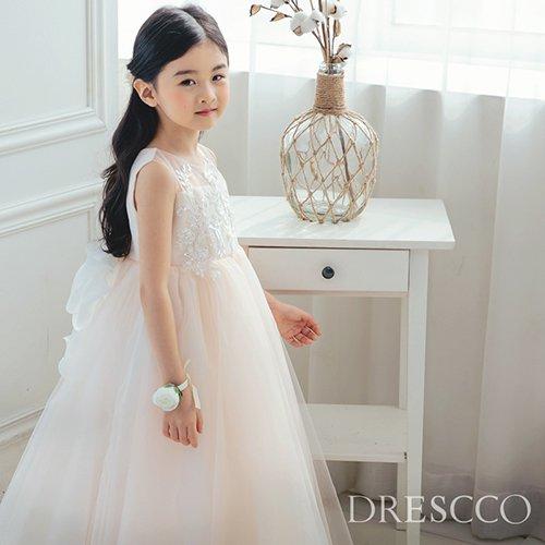 ベビーピンクラグジュアリーシースルーロングドレス