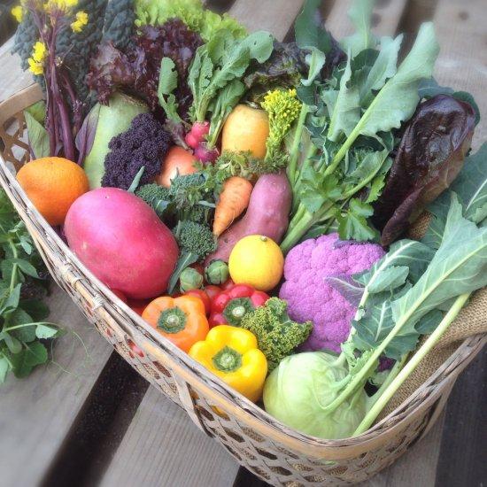 COSMOFARM農園野菜詰合せBOX(小)