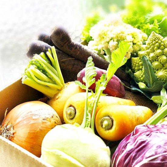 COSMOFARM農園野菜詰合せBOX(大)