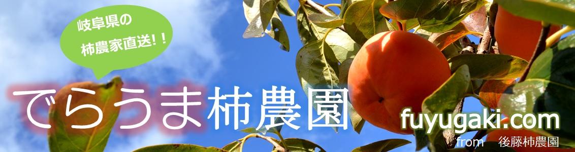 岐阜県の富有柿農家による産直・通販サイト | でらうま柿農園