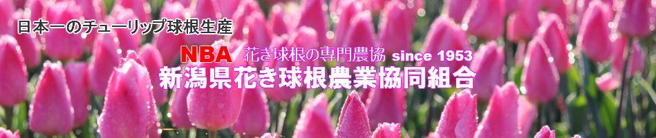 新潟県花卉球根農業協同組合