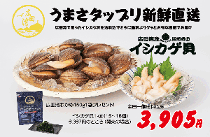 <br>広田湾産イシカゲ貝<br>1kg<br>送料無料<img class='new_mark_img2' src='https://img.shop-pro.jp/img/new/icons25.gif' style='border:none;display:inline;margin:0px;padding:0px;width:auto;' />