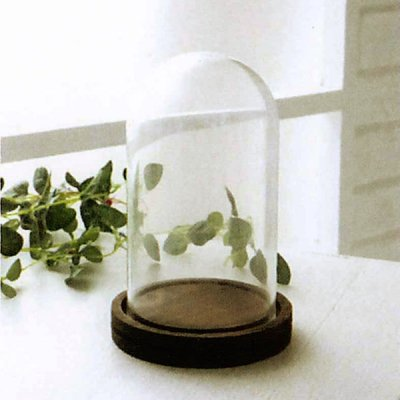 ガラスドームS