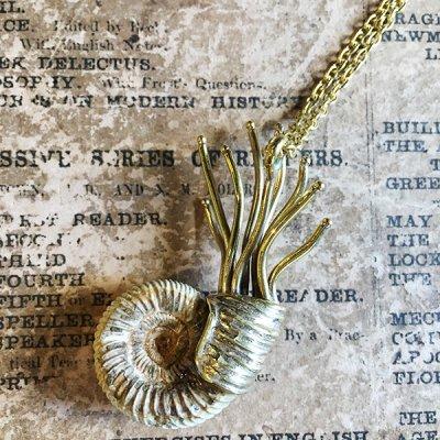 Beads no moto「アンモナイトの化石ネックレス」