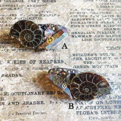 アンモナイトの化石ブローチ