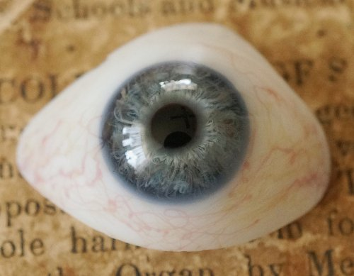 アンティーク・義眼(ドイツ・ラウシャ製/1890年頃)割れあり