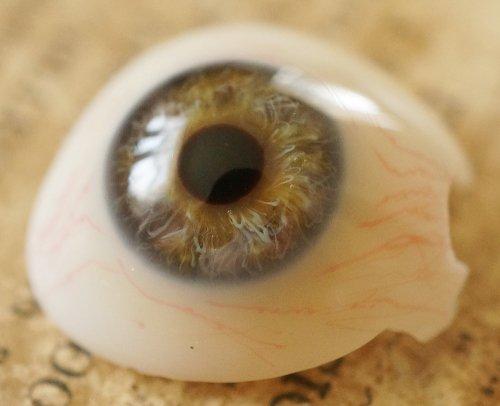 アンティーク・義眼(ドイツ・ラウシャ製)割れあり