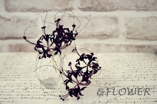 「彼岸花の簪」&FLOWER