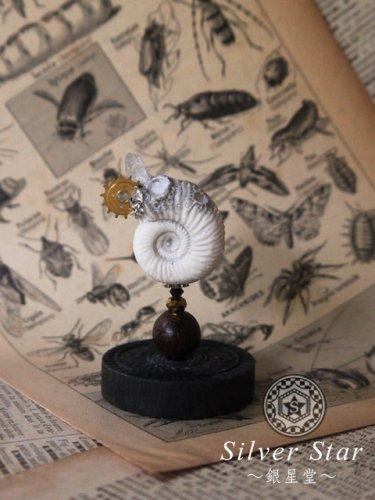 模造アンモナイトの標本