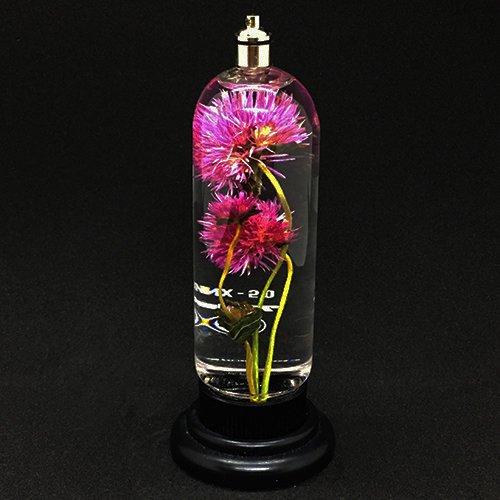 「ハーバリウム立式(センニチコウ)」雨花