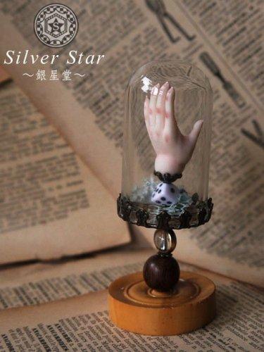 手のドーム標本/ Silver Star〜銀星堂〜