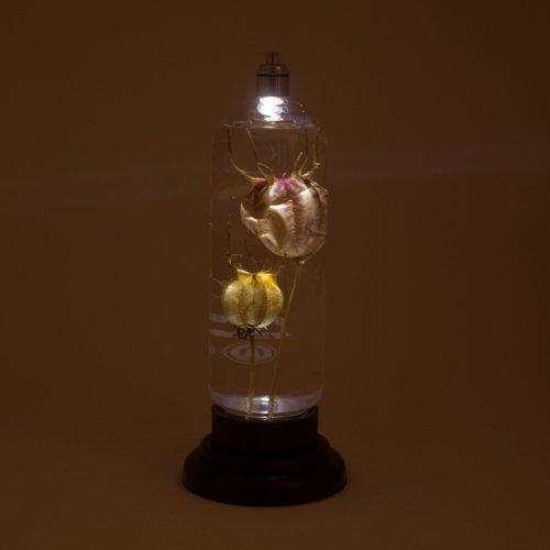 ハーバリウム立式(ニゲラ)/雨花