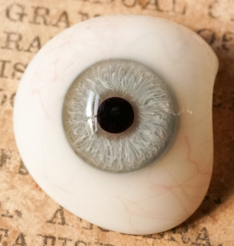 アンティーク義眼(ドイツ1890年頃・ラウシャ製)