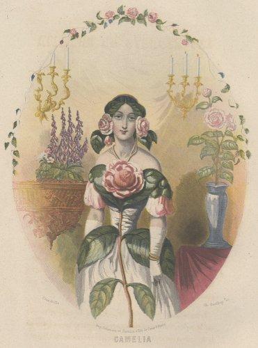J・J・グランヴィル  「花の幻想 LES FLEURS ANIMÉES 」