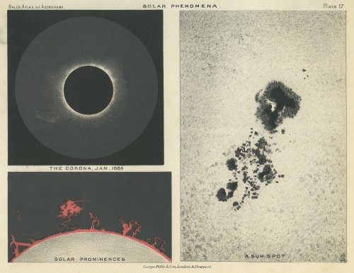 「AN ATLAS OF ASTRONOMY」/イギリス1892