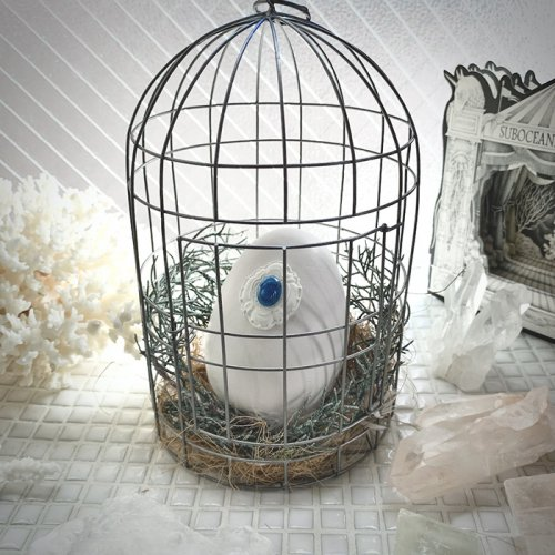 ゆりかごの記憶・青い鳥/雨花