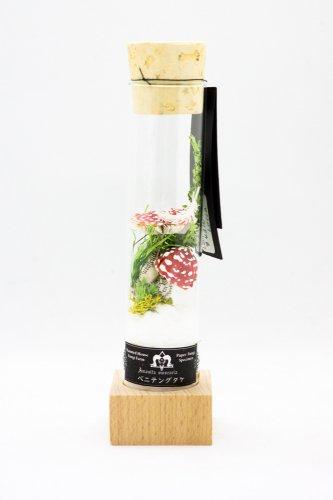 紙きのこ試験管標本(ベニテングタケ)/Locca