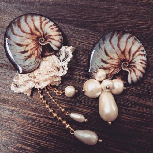 オウムガイの殻ブローチ/MYSTIC