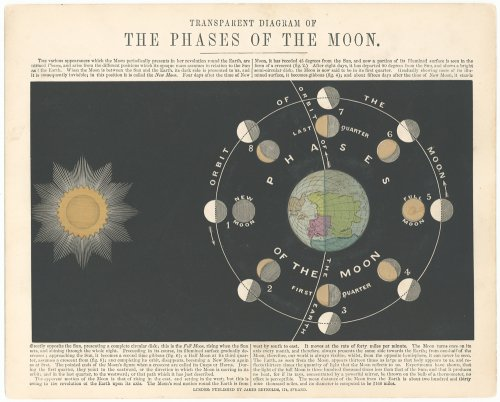 透過光式天文図版「THE PHASES OF THE MOON」/「ASTRONOMICAL DIAGRAMS」(イギリス 1868年頃)