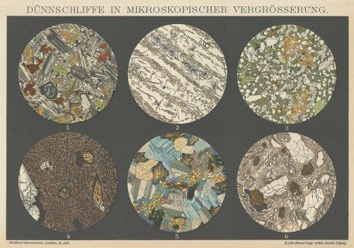 <img class='new_mark_img1' src='https://img.shop-pro.jp/img/new/icons14.gif' style='border:none;display:inline;margin:0px;padding:0px;width:auto;' />博物図版「顕微鏡下の鉱物」(ドイツ 1895年)