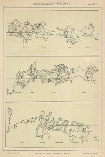 天文図版「COSTELLAZIONI ZODIACALI」(イタリア1904年頃)