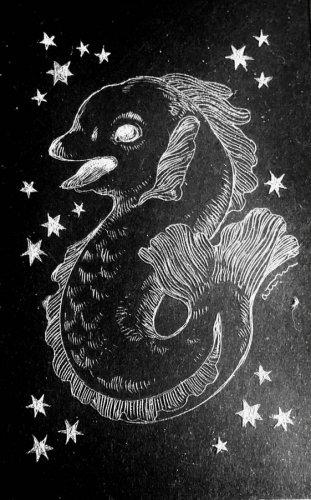 古星座をなぞる。「いるか座」/airi maeyama