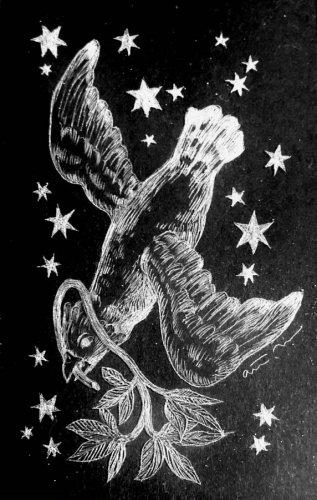 古星座をなぞる。「はと座」/airi maeyama