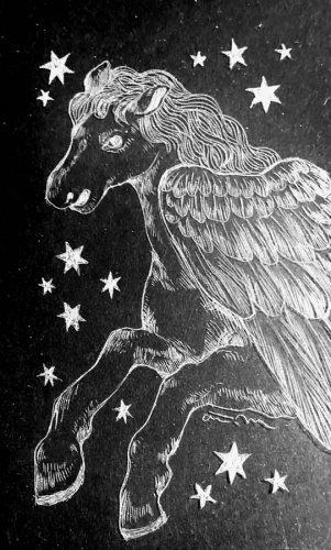 古星座をなぞる。「ペガサス座」/airi maeyama