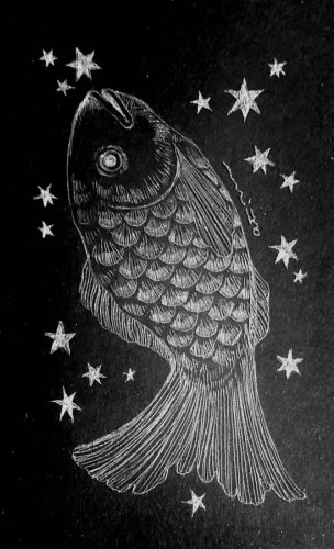 古星座をなぞる。「みなみのうお座」/airi maeyama