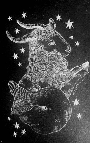 古星座をなぞる。「やぎ座」/airi maeyama