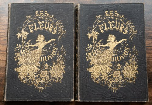 <img class='new_mark_img1' src='https://img.shop-pro.jp/img/new/icons14.gif' style='border:none;display:inline;margin:0px;padding:0px;width:auto;' /> J・J・グランヴィル 「花の幻想 LES FLEURS ANIMÉES 」2冊セット・フランス1847年