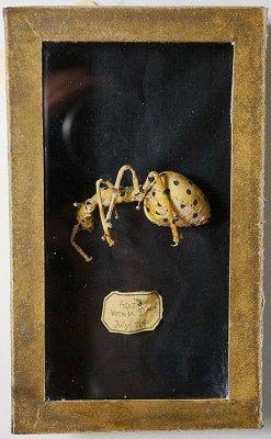 蟻ブローチ