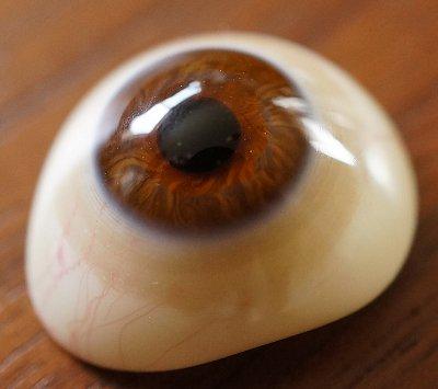 アンティーク・義眼 (ドイツ・ラウシャ製/1890年頃)