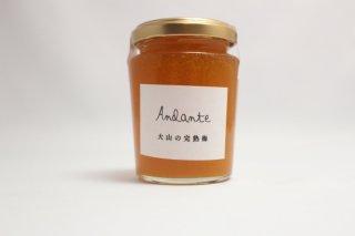 Andante  完熟梅 (M)
