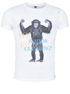 Chillaz(チラス) T-Shirt Cult Monkey(カルトモンキー) ※2016年新モデル ※メール便88円