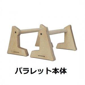AntWorks(アントワークス) Parallettes/Base A(パラレット/ベースA) ※2個1組 ※筋肉をアグレッシブに最適化 ※高強度PNF ※ベースAで壁に設置プル系も