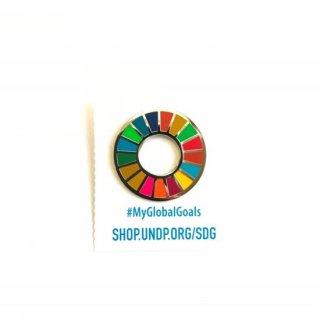 SDGs ピンバッジ